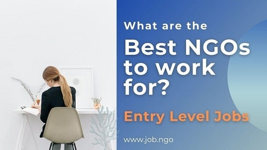 what are the best ngos to work for - entry level jobs